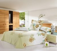Charming Beauty Cheap Modern Bedding Sets