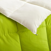 White And Green Comforter Down Alternative Comforter Kids Comforter Teen Comforter