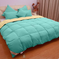 Ice Blue And Beige Goose Down Comforter