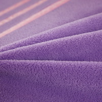 Light Purple Pink Coral Fleece Bedding Teen Bedding